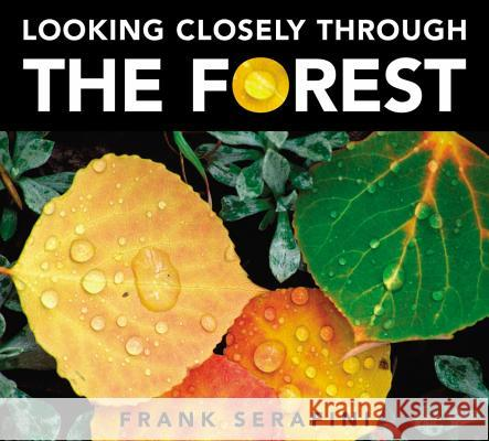 Looking Closely Through the Forest Frank Serafini Frank Serafini 9781771381185