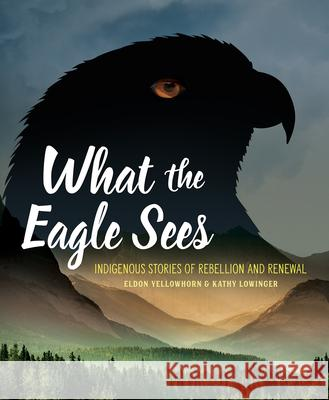 What the Eagle Sees: Indigenous Stories of Rebellion and Renewal  9781773213293