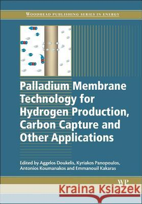 Palladium Membrane Technology for Hydrogen Production, Carbo A Doukelis 9781782422341 Elsevier Science & Technology