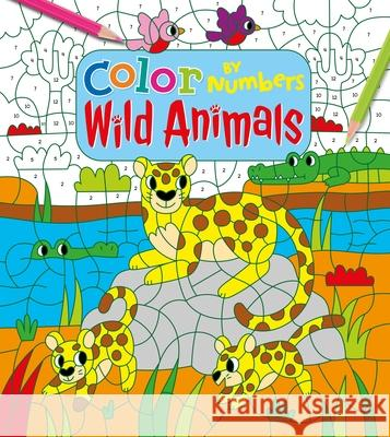 Color by Numbers: Wild Animals Claire Stamper 9781788883139