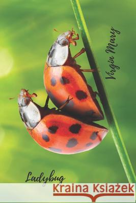 Ladybug. Virgin Mary: Historical Facts about Ladybugs on the Back / Spring Notebook for Bad Boys and Stylish Young Students; Gift for Friend Julia Notebook 9781797050218