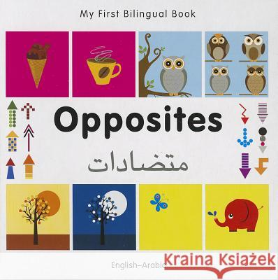 My First Bilingual Book - Opposites: English-arabic   9781840597325