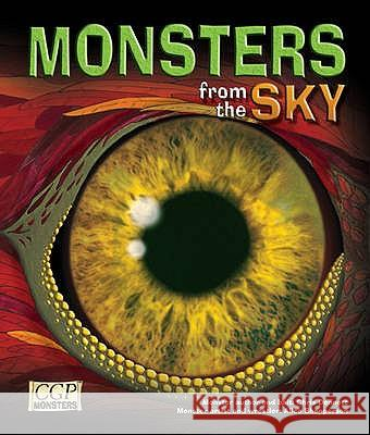 KS2 Monsters from the Sky Reading Book Richard Parsons 9781841464404