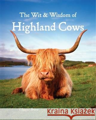 Wit & Wisdom of Highland Cows Ulysses Brave   9781842044865