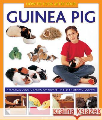 How to Look After Your Guinea Pig David Alderton 9781843227687