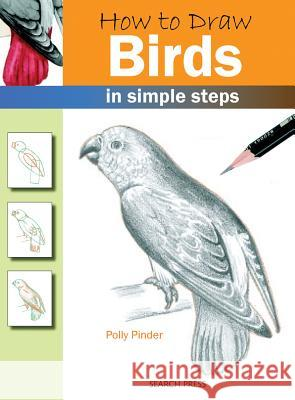 How to Draw: Birds Polly Pinder 9781844483549