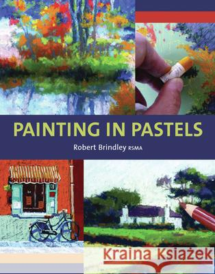 Painting in Pastels  9781847971982