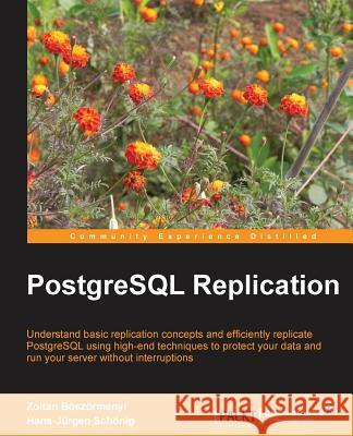PostgreSQL Replication Zoltan Boszormenyi 9781849516723