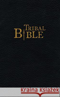 Tribal Bible: Stories of God from Oral Tradition Daniel V. Runyo 9781878559159