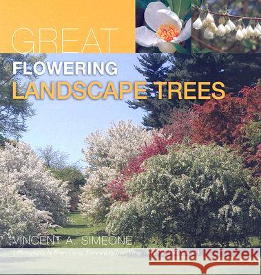 Great Flowering Landscape Trees Vincent A. Simeone Bruce Curtis Irene Virag 9781883052539