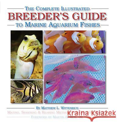 The Complete Illustrated Breeder's Guide to Marine Aquarium Fishes Matthew L. Wittenrich Joshua Highter Matthew L. Wittenrich 9781890087715