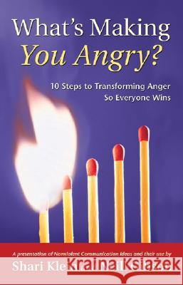 What's Making You Angry?: 10 Steps to Transforming Anger So Everyone Wins Neill Gibson Shari Klein 9781892005137