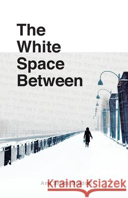 The White Space Between Ami Sand 9781897187494