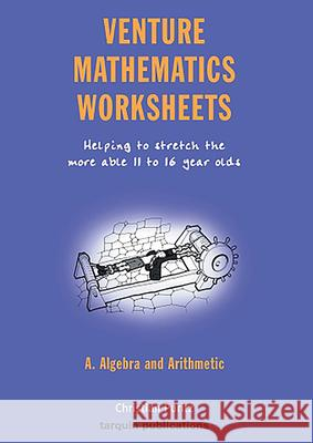 Venture Mathematics Worksheets - Algebra and Arithmetic: Helping to Stretch the More Able 11 to 16 Year Olds Christian Puritz 9781899618705