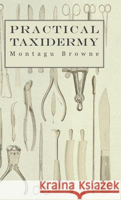 Practical Taxidermy - A Manual of Instruction To The Amateur In Collecting, Preserving, And Setting Up Natural History Specimens of All Kinds Montagu Browne 9781905124329