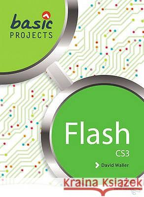 BASIC PROJECTS IN FLASH  9781905292516