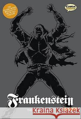 Frankenstein: The Graphic Novel: Original Text Version Mary Shelley 9781906332150