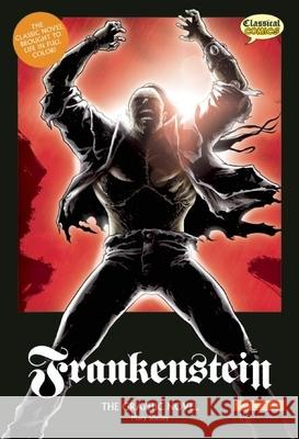 Frankenstein the Graphic Novel: Original Text Mary Wollstonecraft Shelley 9781906332495