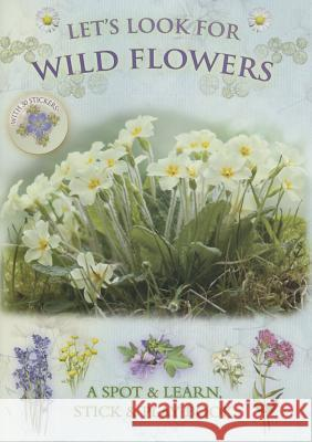 Let's Look for Wild Flowers: A Spot & Learn, Stick & Play Book Andrea Pinnington 9781908489067