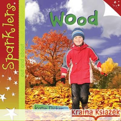 Wood : Sparklers - Out and About Dicker, Katie 9781909850071