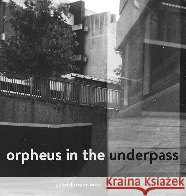 Orpheus in the Underpass Ross McKessock Gabriel Rosenstock 9781912111701
