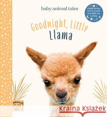Goodnight Little Llama Amanda Wood 9781913520021 Magic Cat Publishing