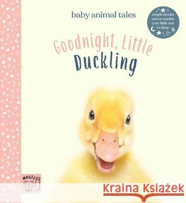 Goodnight, Little Duckling Amanda Wood 9781916180543 Magic Cat Publishing