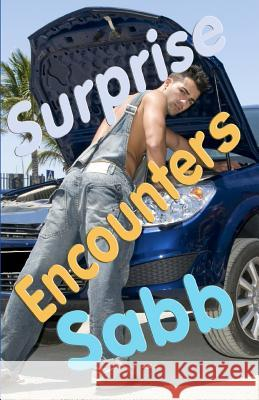 Surprise Encounters: A Gay Erotica Anthology Sabb 9781925190533