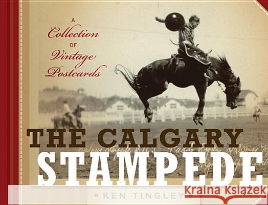 The Calgary Stampede: A Collection of Vintage Postcards Ken Tingley 9781927330005 Rocky Mountain Books, Incorporated