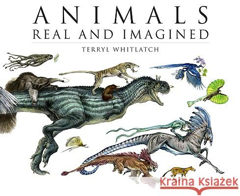 Animals Real and Imagined: The Fantasy of What Is and What Might Be Terryl Whitlatch 9781933492926