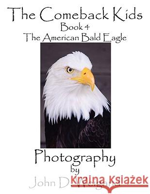 The Comeback Kids, Book 4, the American Bald Eagle Penelope Dyan John D. Weigand 9781935118015