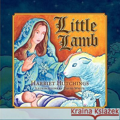 Little Lamb Harriet Hutchings David White 9781936343539