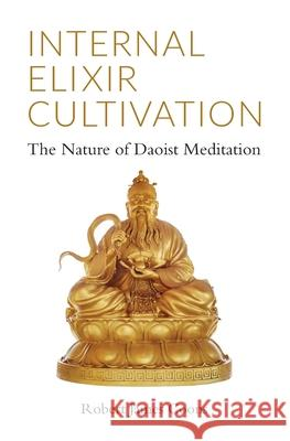 Internal Elixir Meditation: The Nature of Daoist Meditation Robert James Coons 9781943155132