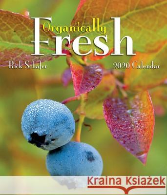 2020 Organically Fresh Mini Wall Calendar Rick Schafer 9781944857837