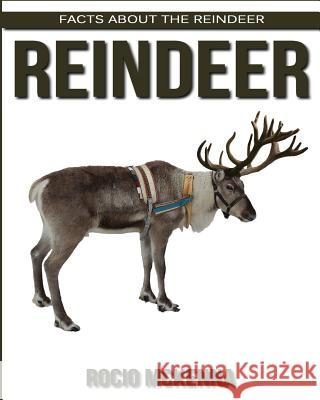Facts about the Reindeer Rocio McKenna 9781979256674