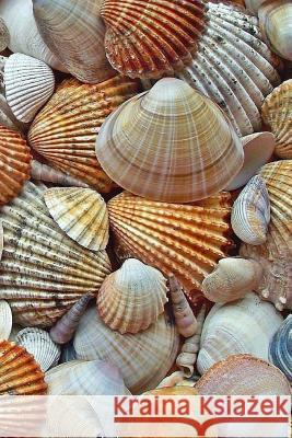 Seashells Notebook: 150 Lined Pages, Glossy Softcover, 6 X 9 Wild Pages Press 9781983700231