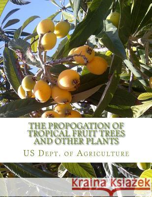 The Propogation of Tropical Fruit Trees and Other Plants: Bureau of Plant Industry, Bulletin 48 Us Dept of Agriculture Roger Chambers 9781985120273