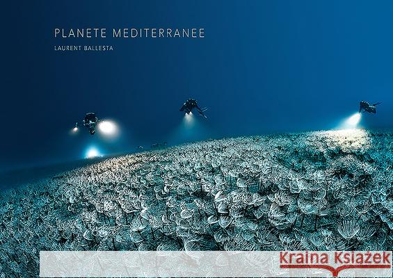 Mediterranean Planet Laurent Ballesta 9782490952106
