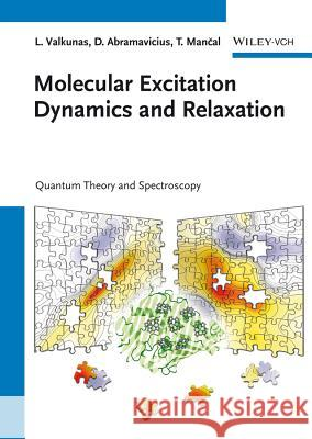 Molecular Excitation Dynamics and Relaxation: Quantum Theory and Spectroscopy Valkunas, Leonas; Abramavicius, Darius; Mancal, Tomás 9783527410088