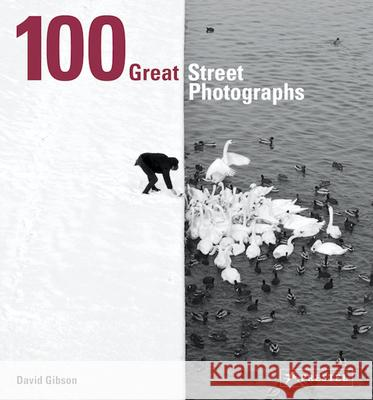 100 Great Street Photographs David Gibson 9783791384382