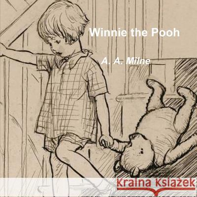 Winnie the Pooh A A Milne   9788087888162 Important Books