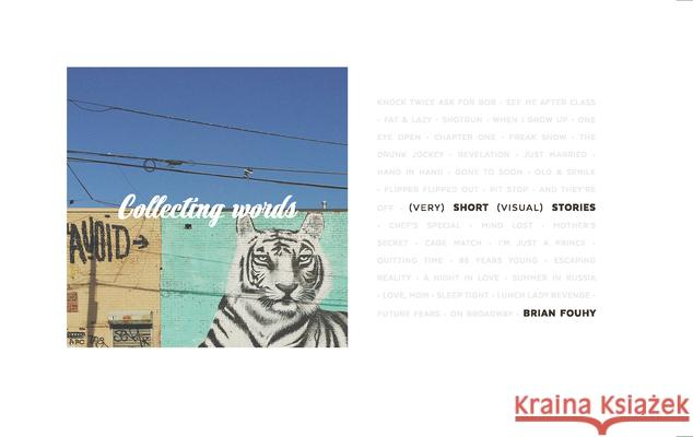 Collecting Words : (Very) Short (Visual) Stories Brian Fouhy   9789187815904