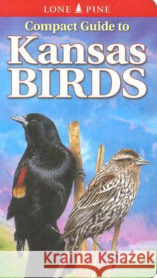 Compact Guide to Kansas Birds Ted T. Cable Scott Seltman Krista Kagume 9789768200259 Lone Pine Publishing