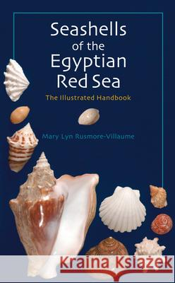 Seashells of the Egyptian Red Sea: The Illustrated Handbook Mary Lyn Rusmore-Villaume 9789774160967