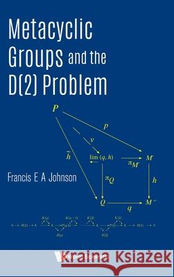 Metacyclic Groups and the D(2) Problem Francis E. a. Johnson 9789811222757