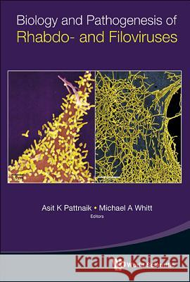Biology and Pathogenesis of Rhabdo- And Filoviruses Asit Kumar Pattnaik Michael A. Whitt Asit K. Pattnaik 9789814635332