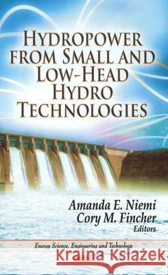 Hydropower from Small and Low-Head Hydro Technologies