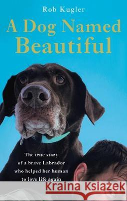 A Dog Named Beautiful : The true story of the Labrador who taught a Marine to love life again Robert Kugler 9780593079546 Transworld Publishers Ltd - książka