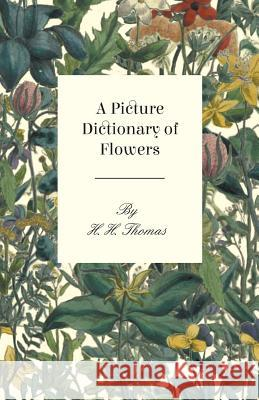 A Picture Dictionary of Flowers H. Thomas 9781445518817 Saerchinger Press - książka