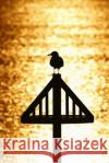 A Seagull Silhouetted by a Golden Sunset Journal: 150 Page Lined Notebook/Diary Cs Creations 9781542429047 Createspace Independent Publishing Platform